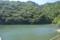 鷹の巣ダム ダム湖(関川村)