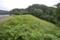 岩崎農場溜池(北上市)