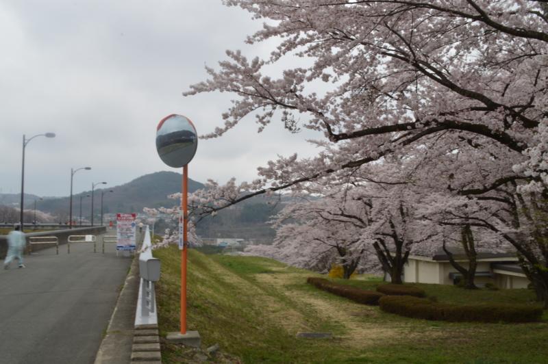 f:id:kazu_ma634:20160611000920j:image:w400