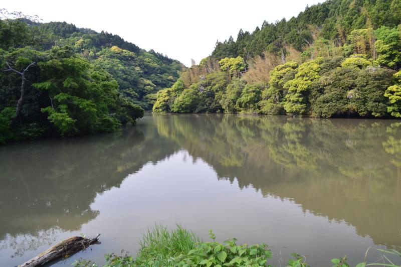 f:id:kazu_ma634:20160627220246j:image:w400