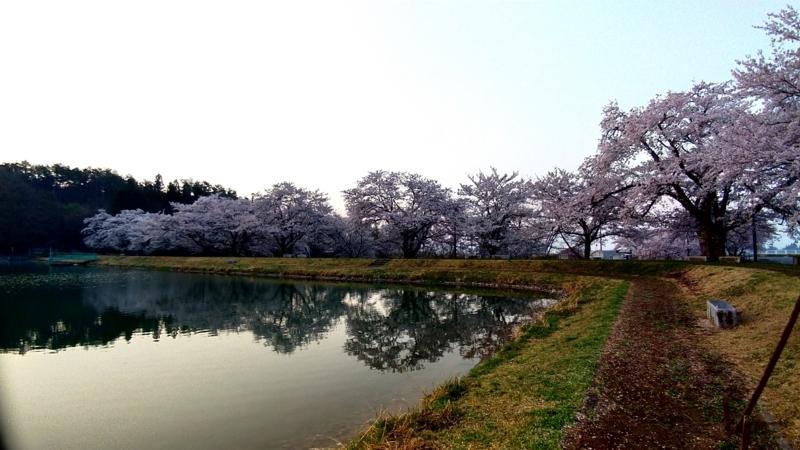 f:id:kazu_ma634:20180526224731j:image:w400