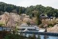 長谷寺 本坊から本堂を眺めます