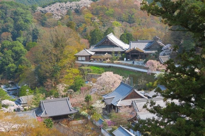 長谷寺 本堂の舞台からの眺め