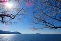 奥びわ湖 びわ湖にうかぶ竹生島