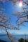 奥びわ湖 つづら尾崎からの眺め