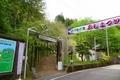 みやまの里ふじまつり 和歌山県日高川町