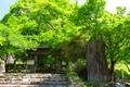 高源寺 山門