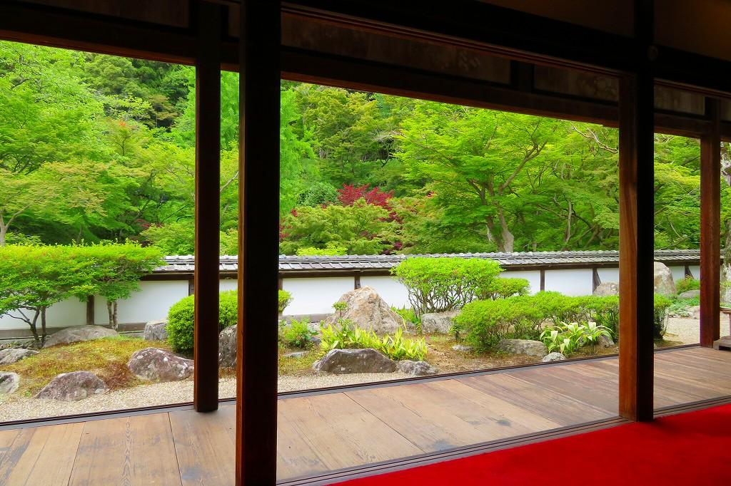 正暦寺 客殿の庭