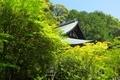 円成寺 本堂