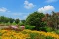 馬見丘陵公園 四季の花が綺麗な県立公園