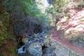 天滝 片道1.2kmのトレッキングです