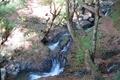 天滝 様々な小さな滝が現れます