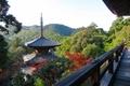 妙見堂 本堂から見る三重塔