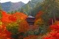 高源寺 紅葉公園からの眺め