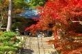 大国寺 紅葉と本堂