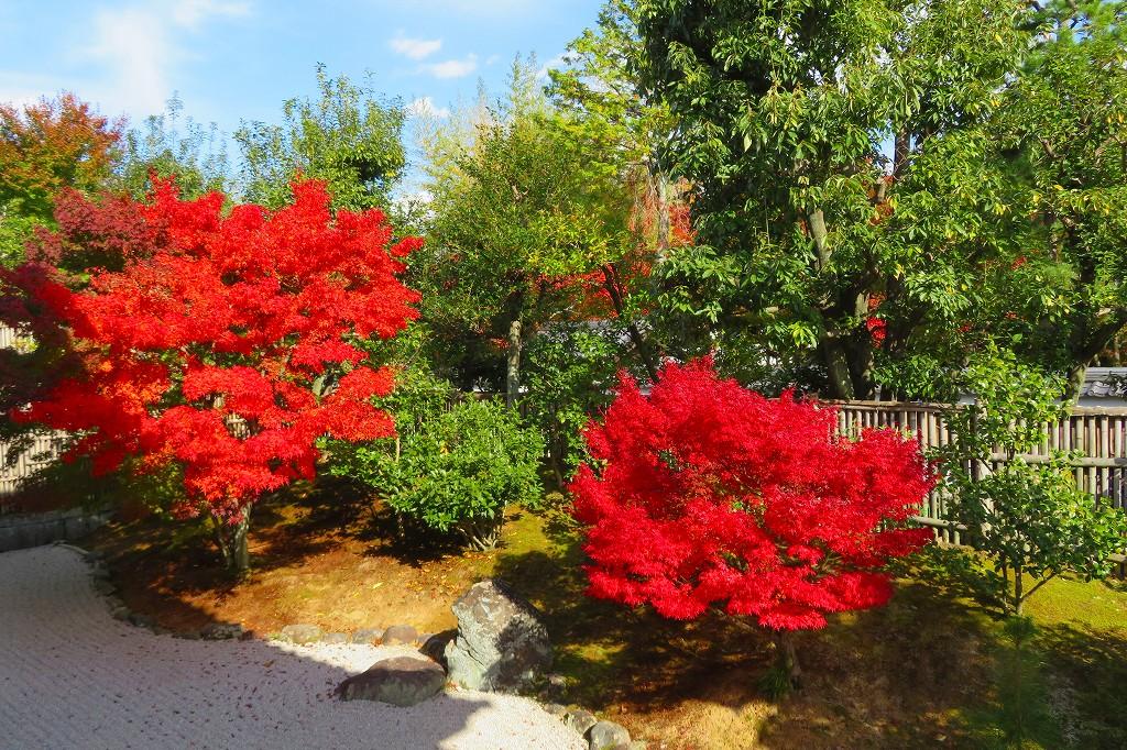相国寺 開山堂の庭園