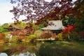 長岳寺 放生池