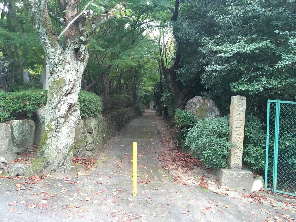 f:id:kazuha1221:20181026215422j:plain