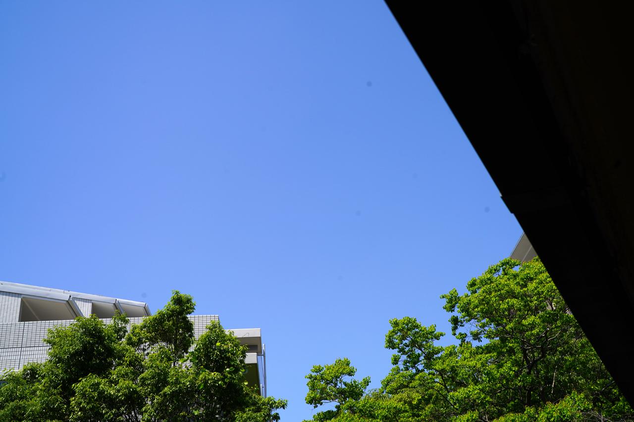 f:id:kazuhiro0214:20210607223036p:plain