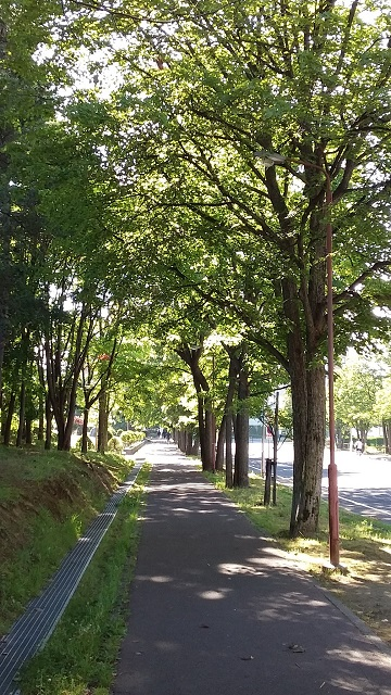 f:id:kazuhisaiwamoto-su:20170809001300j:plain