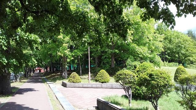 f:id:kazuhisaiwamoto-su:20180615224017j:plain