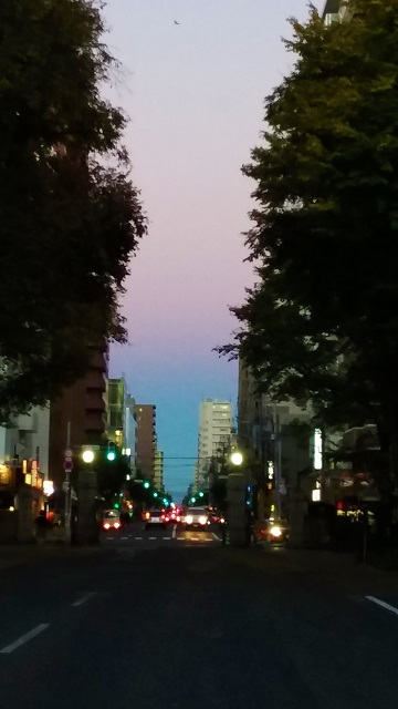 f:id:kazuhisaiwamoto-su:20181011120925j:plain