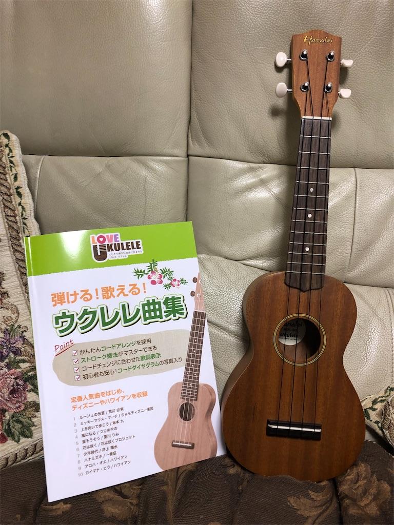 f:id:kazuizumikanon:20190615214044j:image
