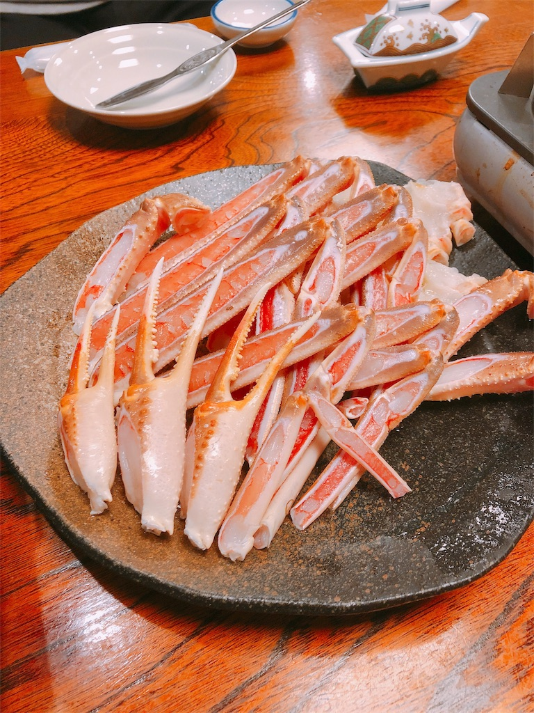 f:id:kazuki-iroiro:20190127134144j:image