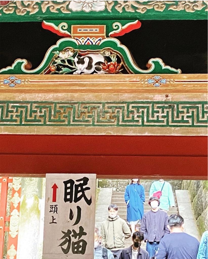 f:id:kazuki1026:20210526163908j:image