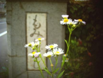 f:id:kazuki62:20110718221742j:image:w420
