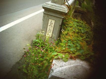 f:id:kazuki62:20110718221743j:image:w420
