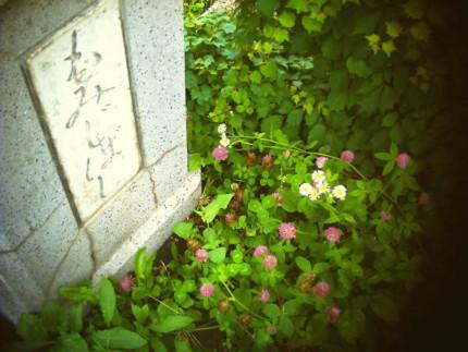 f:id:kazuki62:20110718221802j:image:w420
