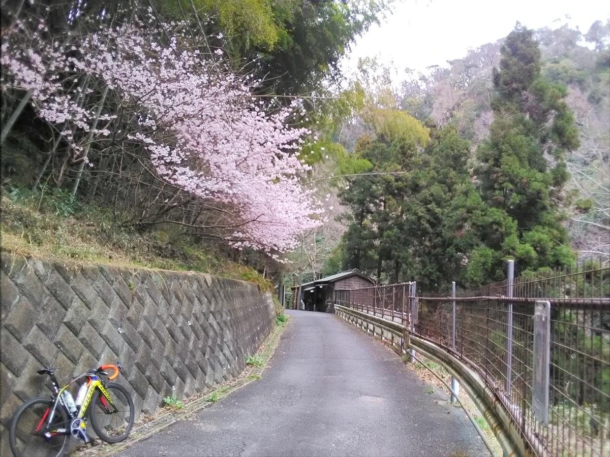 f:id:kazuki_nagasawa:20210307122018j:plain