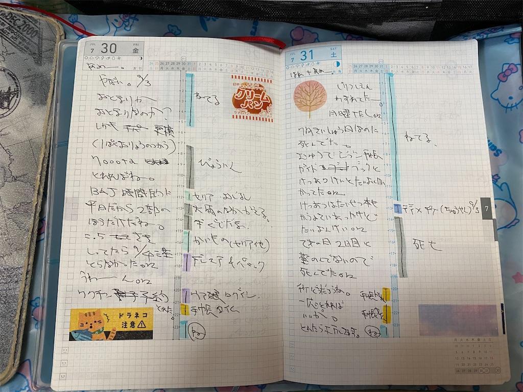 f:id:kazukichi1783:20210808112147j:image