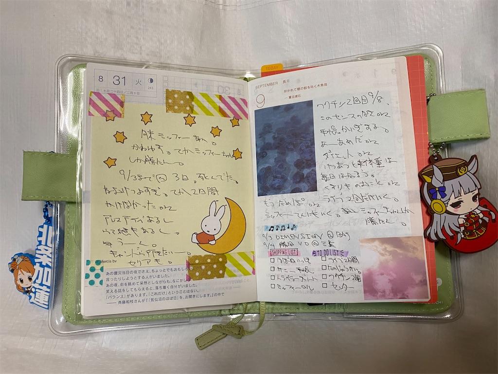 f:id:kazukichi1783:20210917170743j:image