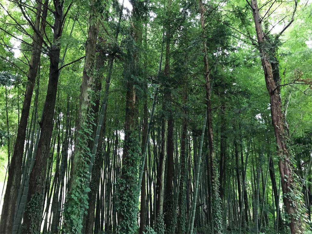 f:id:kazukiiyomasa:20170817092838j:plain