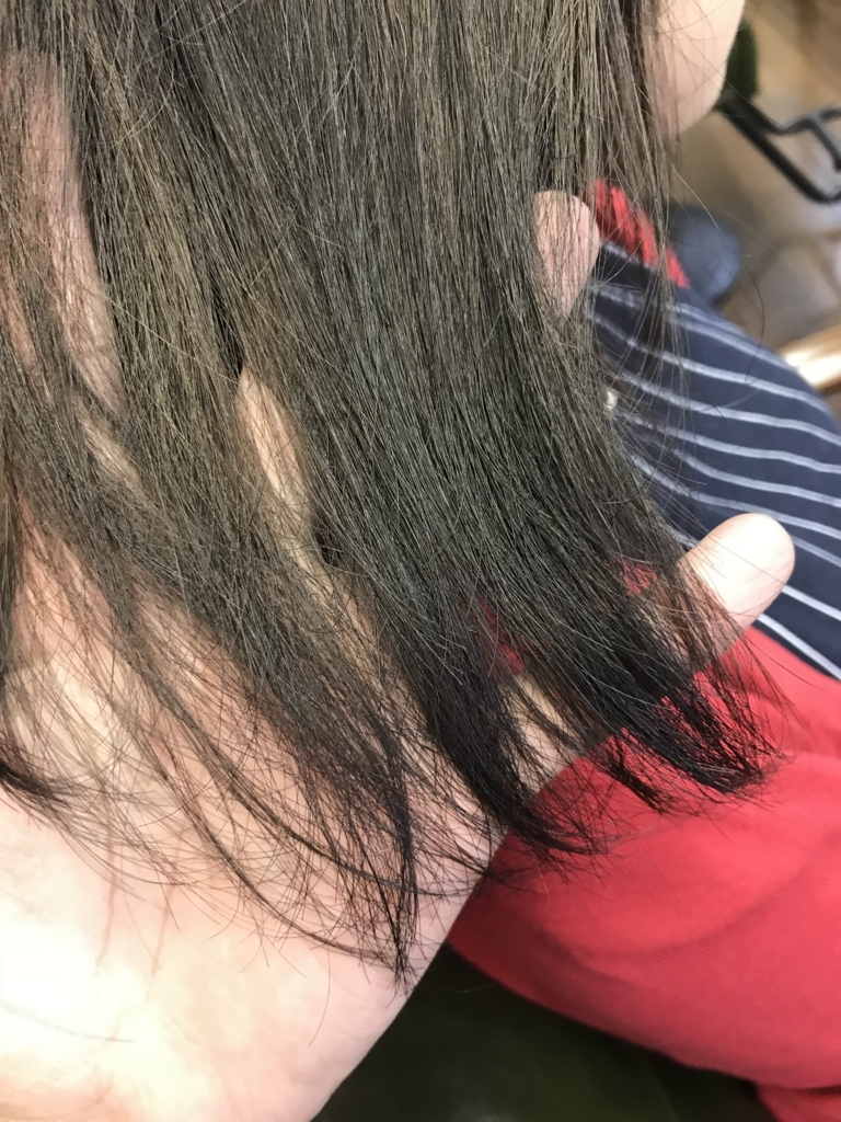 f:id:kazukiiyomasa:20171006164100j:plain