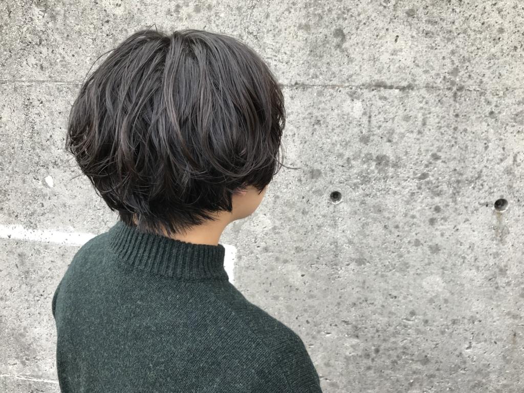 f:id:kazukiiyomasa:20171118162554j:plain
