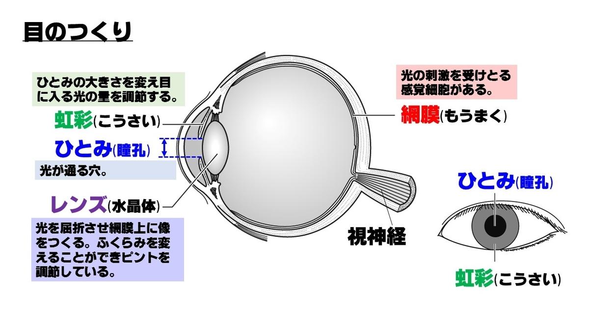 f:id:kazukjudo:20190531150328j:plain
