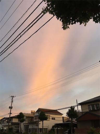 f:id:kazukun2019:20210605225527j:image