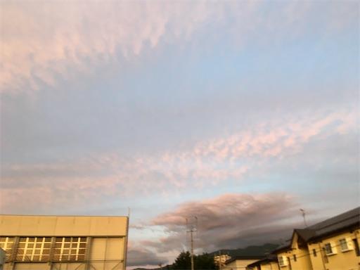 f:id:kazukun2019:20210605225534j:image
