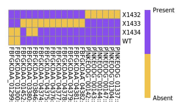 f:id:kazumaxneo:20200220130226p:plain