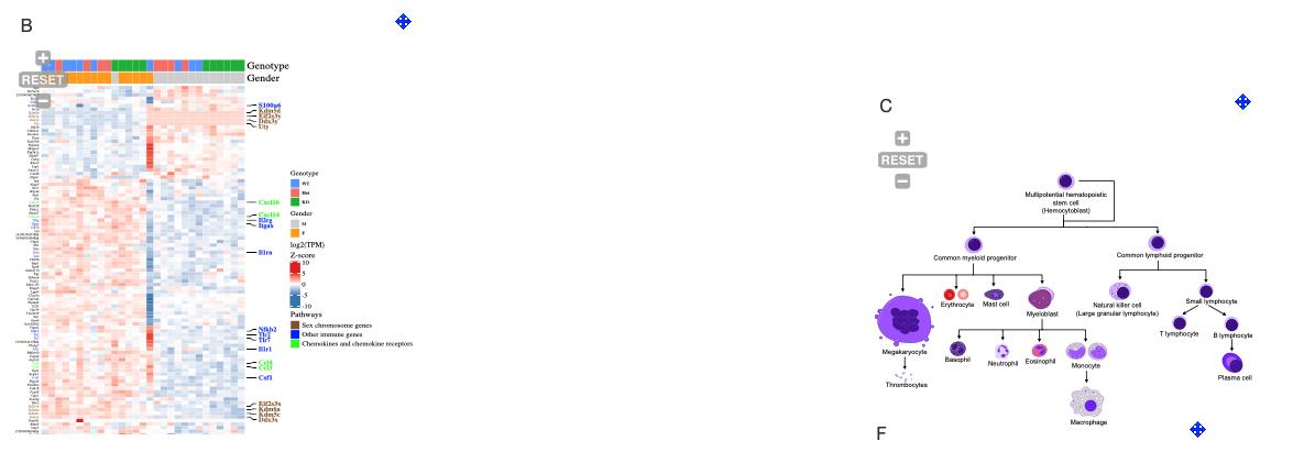 f:id:kazumaxneo:20210223170107p:plain