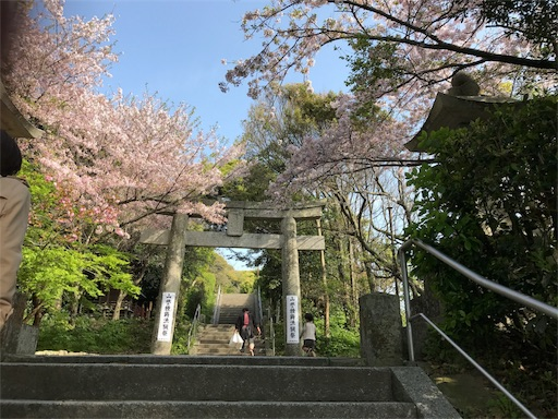 f:id:kazumi-amitie:20170416003744j:image