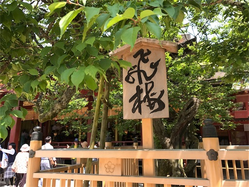 f:id:kazumi-amitie:20170519220813j:image