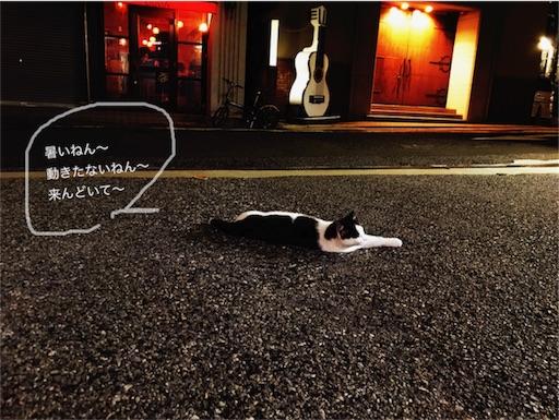 f:id:kazumi-amitie:20170715001713j:image