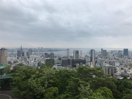 f:id:kazumi-amitie:20180502224159j:image