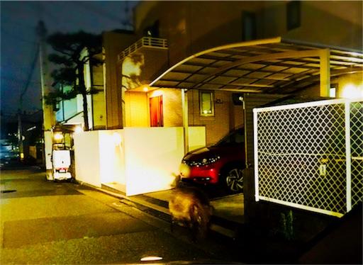 f:id:kazumi-amitie:20180514001222j:image