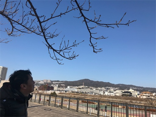 f:id:kazumi-amitie:20190203095608j:image