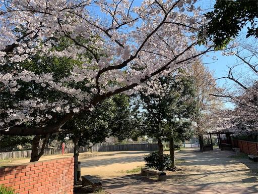 f:id:kazumi-amitie:20190403082400j:image